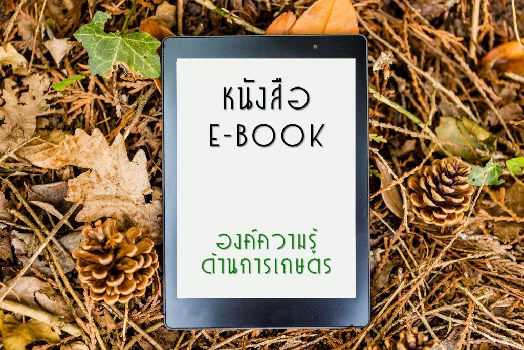 หนังสืออิเล็กทรอนิกส์ (e-Book)