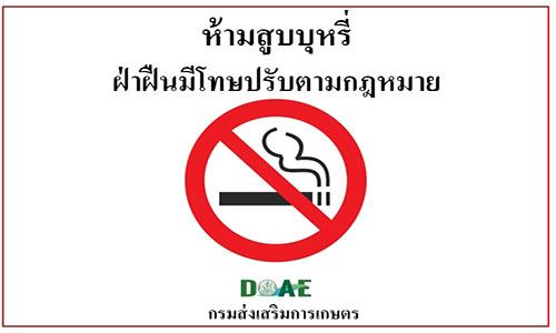 การบังคับใช้ เขตและเครื่องหมายปลอดบุหรี่ สูบบุหรี่ พ.ศ.2561