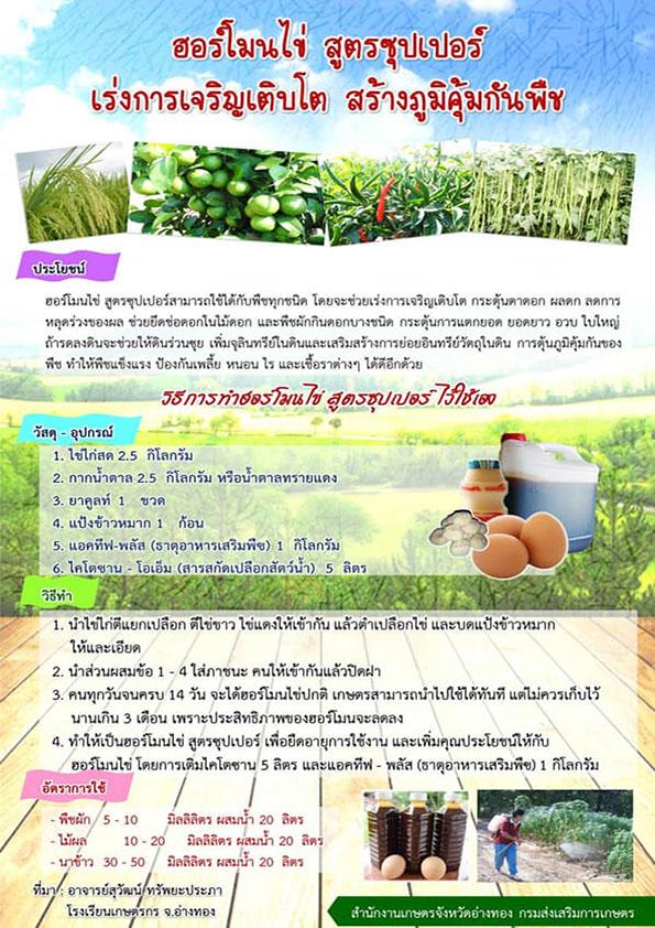 ฮอร์โมนไข่ สูตรซุปเปอร์ เร่งการเจริญเติบโต สร้างภูมิคุ้มกันพืช