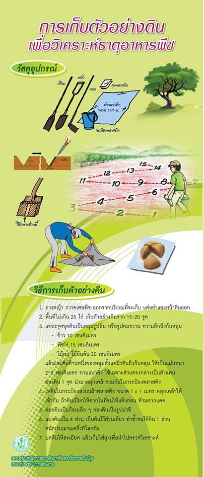 การเก็บตัวอย่างดินเพื่อวิเคราะห์ธาตุอาหารพืช