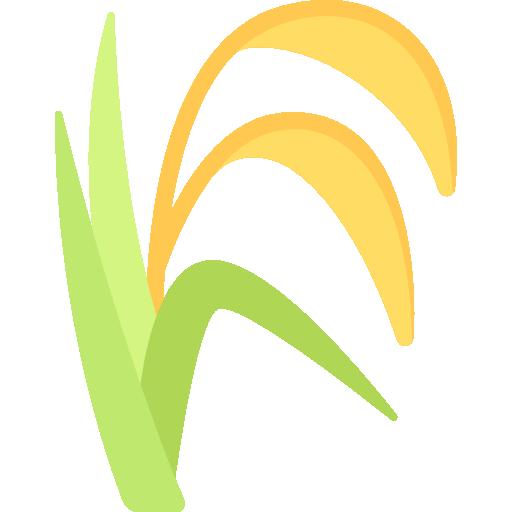 หมวดพืชไร่